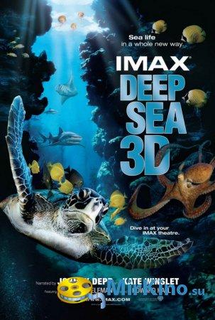 Тайны подводного мира 3D (2006)